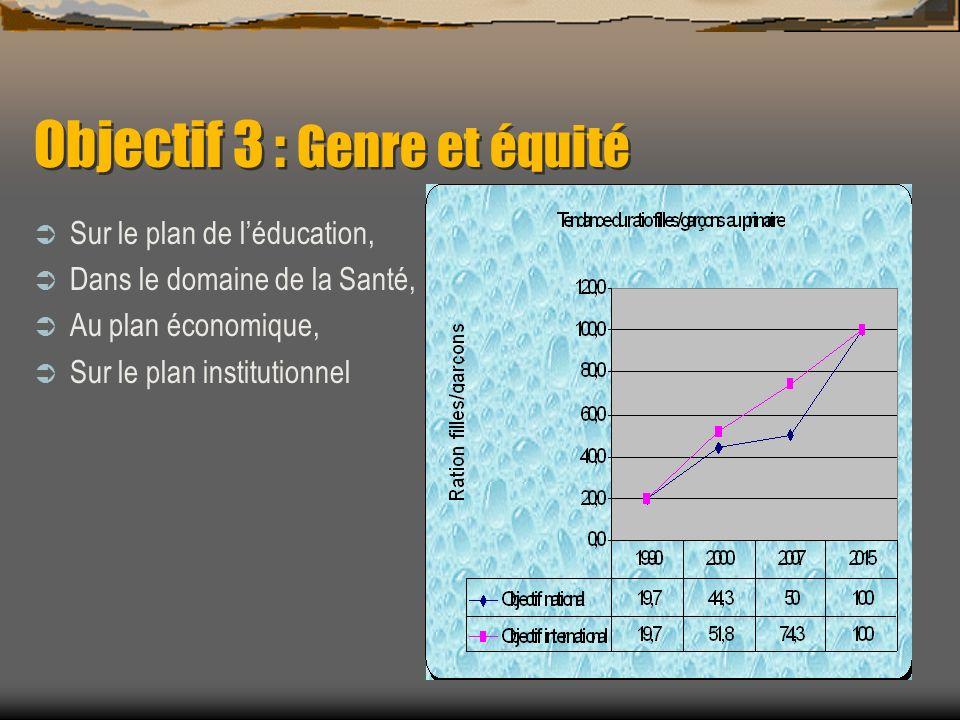 Objectif 3 : Genre et équité Sur le plan de léducation, Dans le domaine de la Santé, Au plan économique, Sur le plan institutionnel