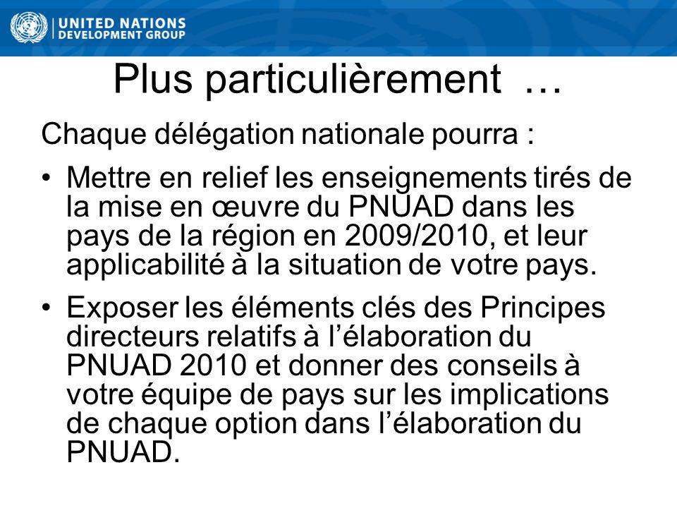 Plus particulièrement … Chaque délégation nationale pourra : Mettre en relief les enseignements tirés de la mise en œuvre du PNUAD dans les pays de la région en 2009/2010, et leur applicabilité à la situation de votre pays.