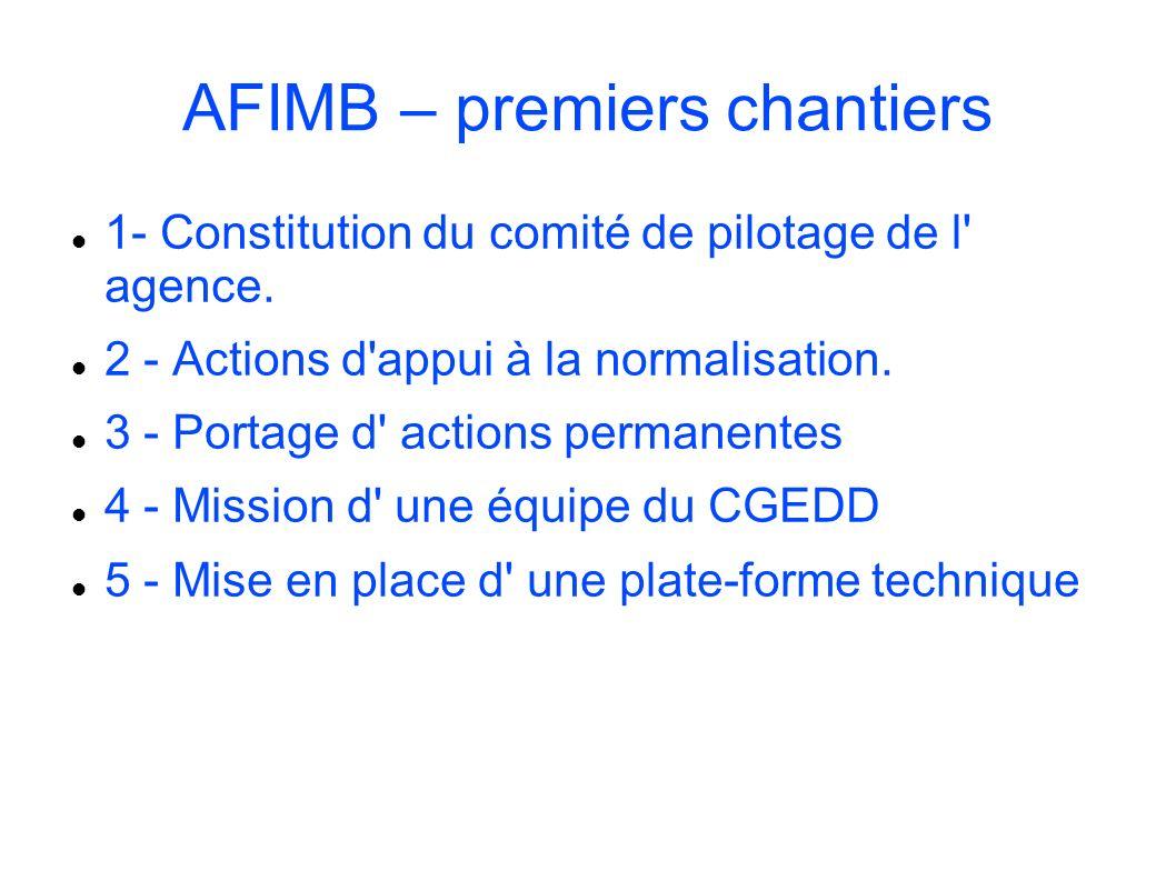 AFIMB – premiers chantiers 1- Constitution du comité de pilotage de l' agence. 2 - Actions d'appui à la normalisation. 3 - Portage d' actions permanen