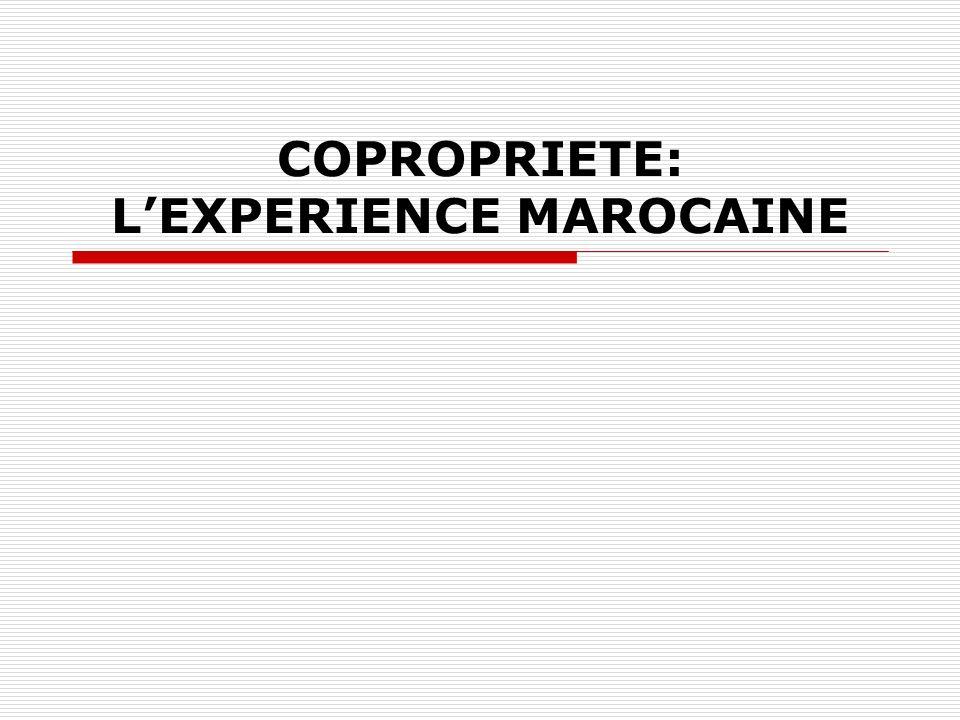 COPROPRIETE: LEXPERIENCE MAROCAINE
