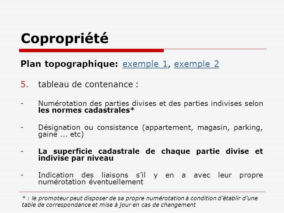 Copropriété Plan topographique: exemple 1, exemple 2exemple 1exemple 2 5.tableau de contenance : -Numérotation des parties divises et des parties indi