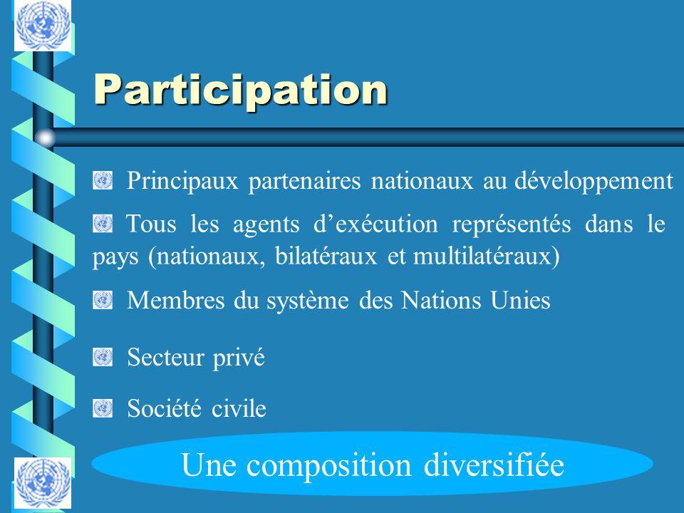 Participation Membres du système des Nations Unies Tous les agents dexécution représentés dans le pays (nationaux, bilatéraux et multilatéraux) Sociét