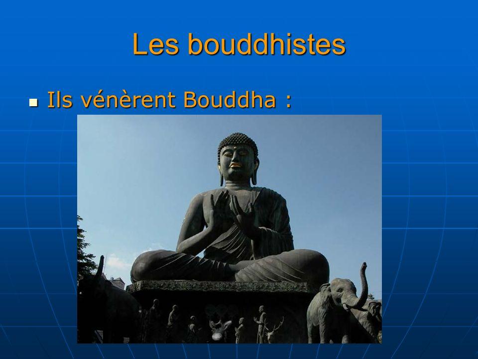 Les bouddhistes Ils vénèrent Bouddha : Ils vénèrent Bouddha :