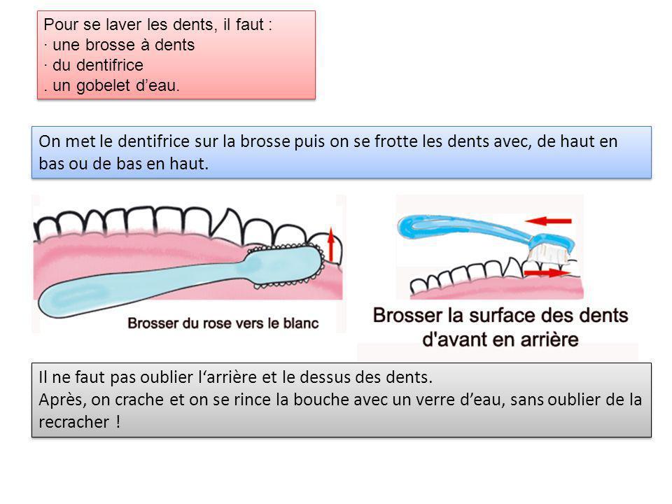 Pour se laver les dents, il faut : · une brosse à dents · du dentifrice. un gobelet deau. Pour se laver les dents, il faut : · une brosse à dents · du