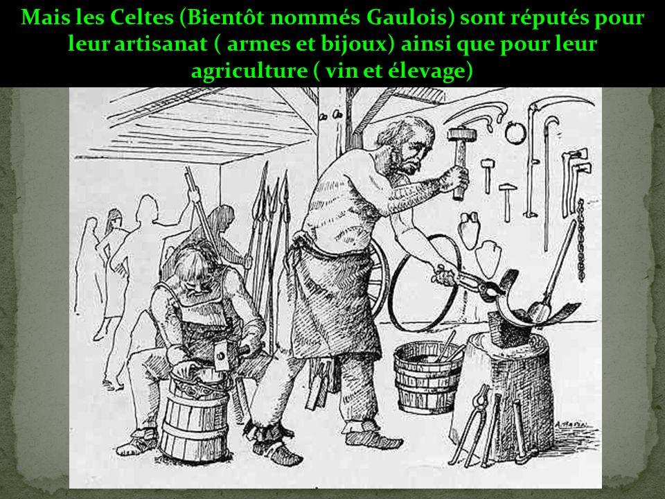 Mais les Celtes (Bientôt nommés Gaulois) sont réputés pour leur artisanat ( armes et bijoux) ainsi que pour leur agriculture ( vin et élevage)