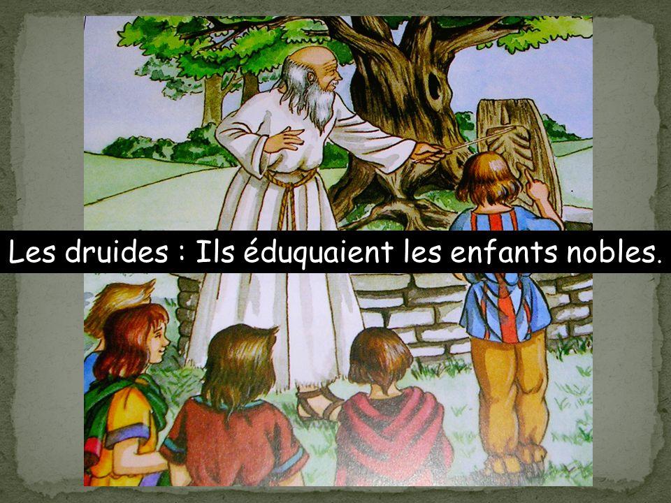 Les druides : Ils éduquaient les enfants nobles.
