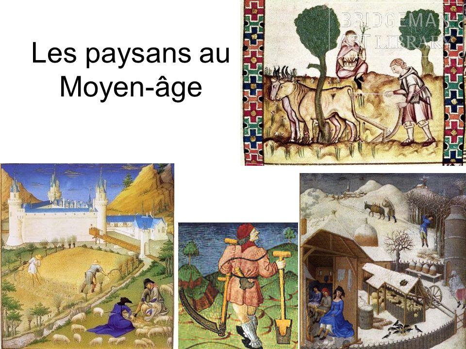 On travaille tout à la main Miniature du XIII° siècle, Paris, Bibliothèque nationale de France La faucille La faux Le fléau La gaule Fouler le raisin Semer