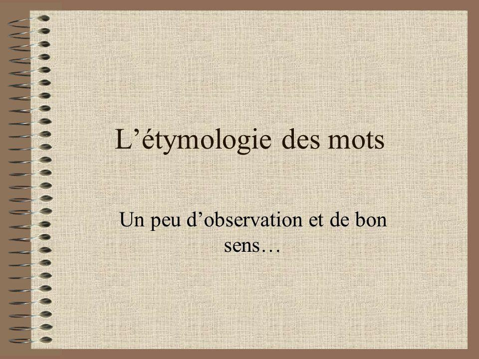 Létymologie des mots Un peu dobservation et de bon sens…