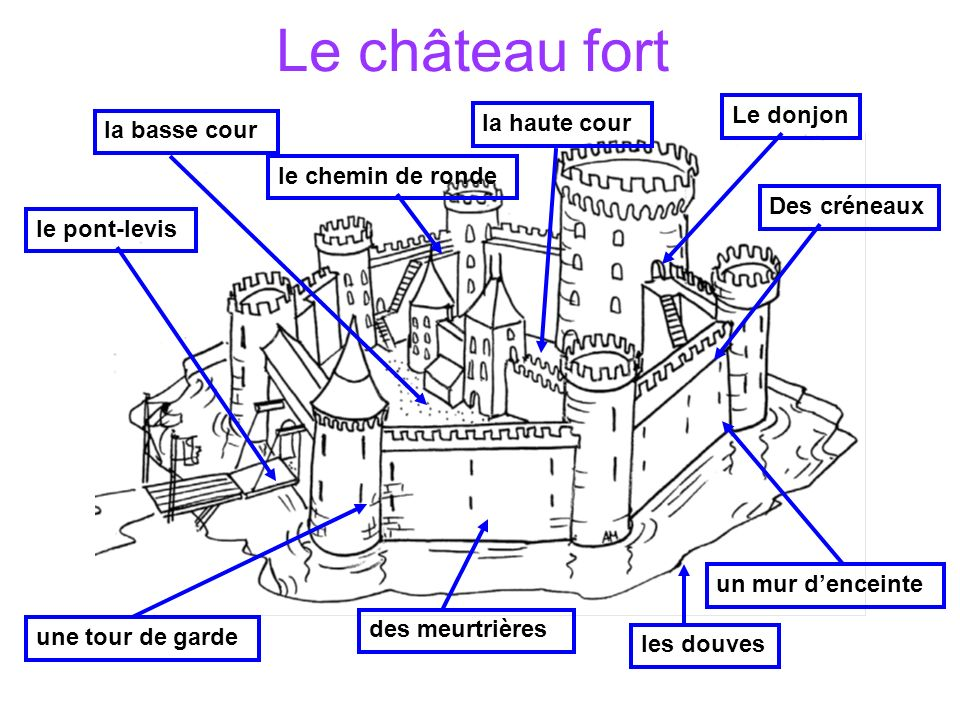 Le château fort le pont-levis les douves Des créneaux Le donjon des meurtrières la basse cour la haute cour le chemin de ronde un mur denceinte une to