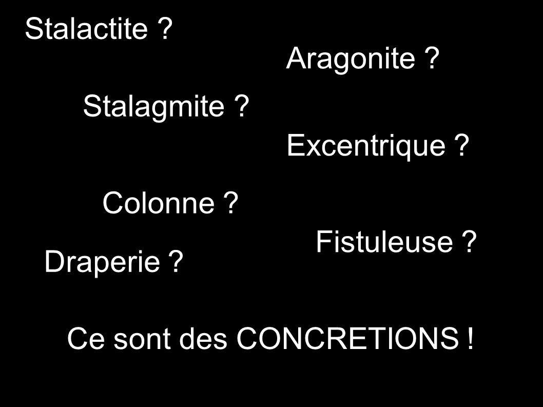 Stalactite . Fistuleuse . Excentrique . Aragonite .