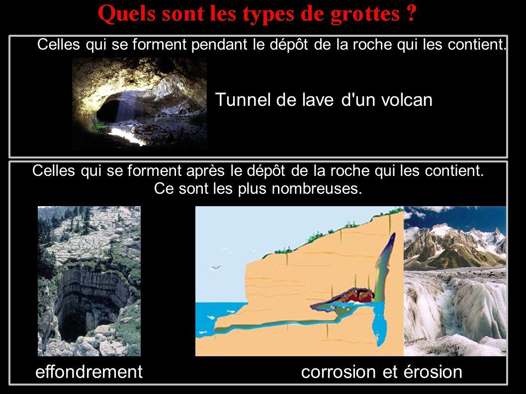 Celles qui se forment pendant le dépôt de la roche qui les contient.