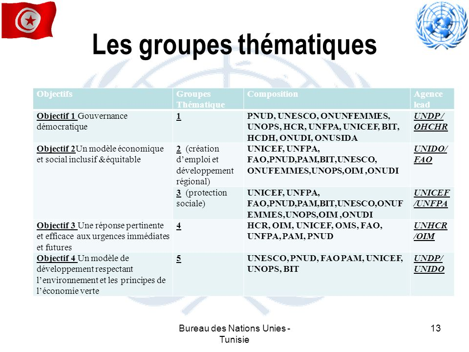 Les groupes thématiques ObjectifsGroupes Thématique CompositionAgence lead Objectif 1 Gouvernance démocratique 1PNUD, UNESCO, ONUNFEMMES, UNOPS, HCR,