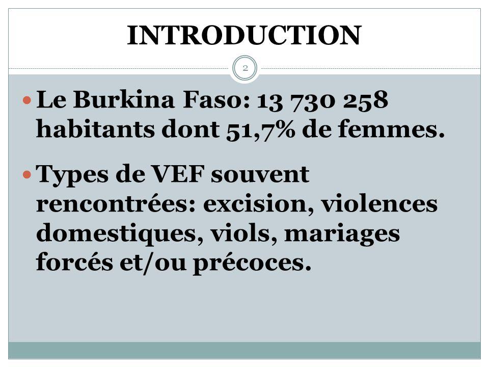 PRESENTATION DU PROGRAMME CONJOINT DE LUTTE CONTRE LES VIOLENCES BASEES SUR LE GENRE AU BURKINA FASO 1