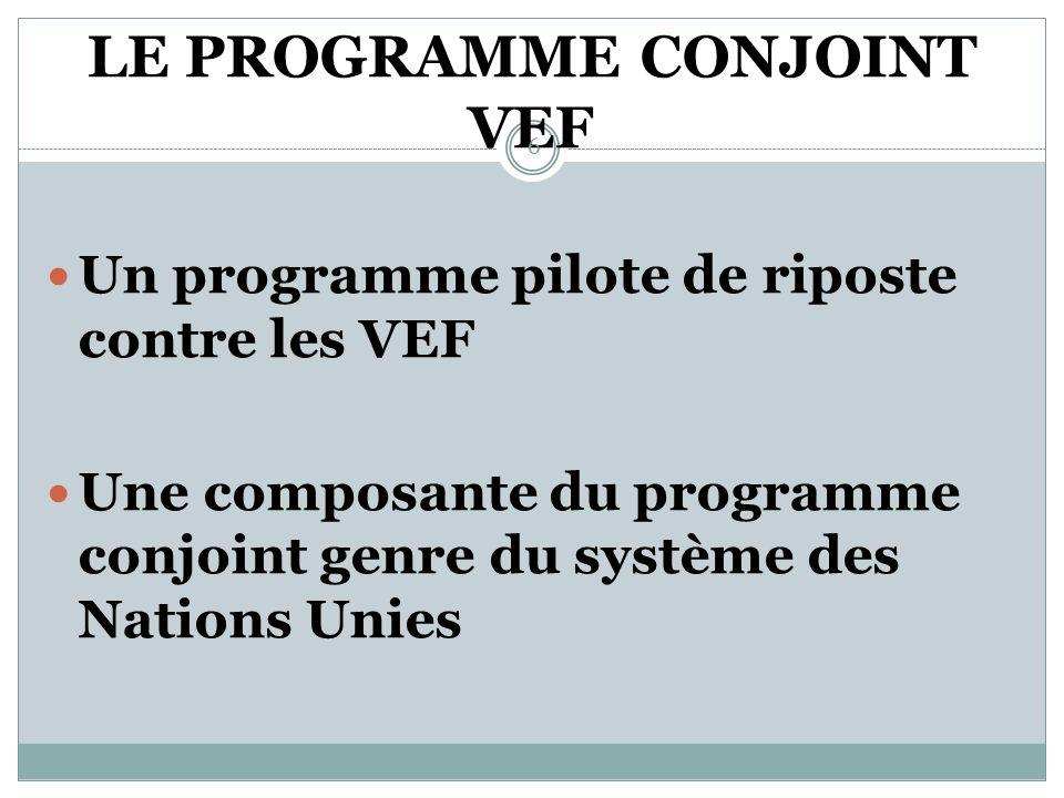 LES ACTIONS (suite) Des partenaires techniques et financiers engagés Mise en œuvre du programme conjoint VEF 5