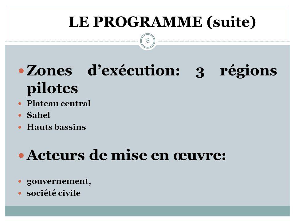 LE PROGRAMME (suite) Dix pays bénéficiaires dont le Burkina Faso Elaboration: méthode participative (gouvernement/système des NU/OSC) 7