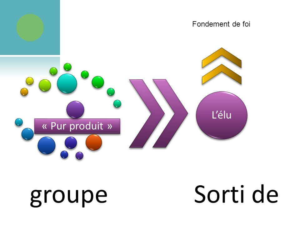 « Pur produit » groupe Lélu Sorti de Fondement de foi