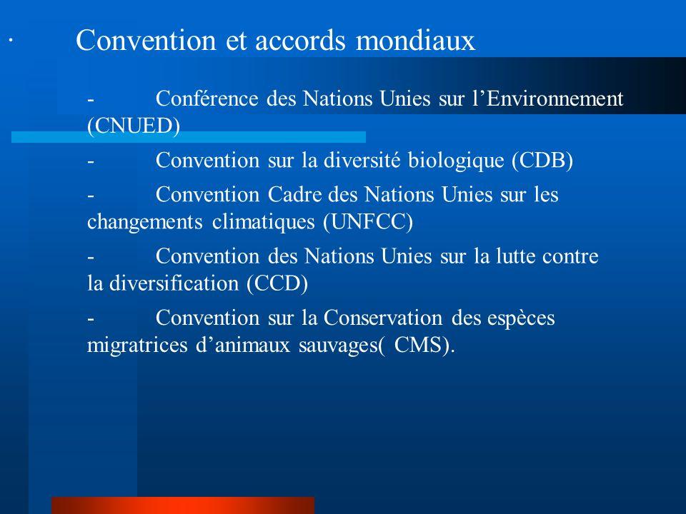 · La FAO a été un acteur primordial dans les instances intergouvernementales : -le Groupe Intergouvernemental sur les forêts (GIF) en 1995, 1997 -le F