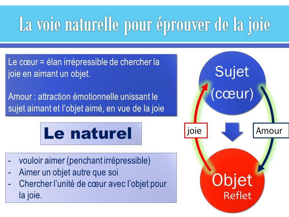 Euphorie naturelle Renforce les conduites saines Favorise la croissance Améliore le bien-être Euphorie artificielle Renforce les tendances addictives Court-circuite la croissance Détériore le bien-être