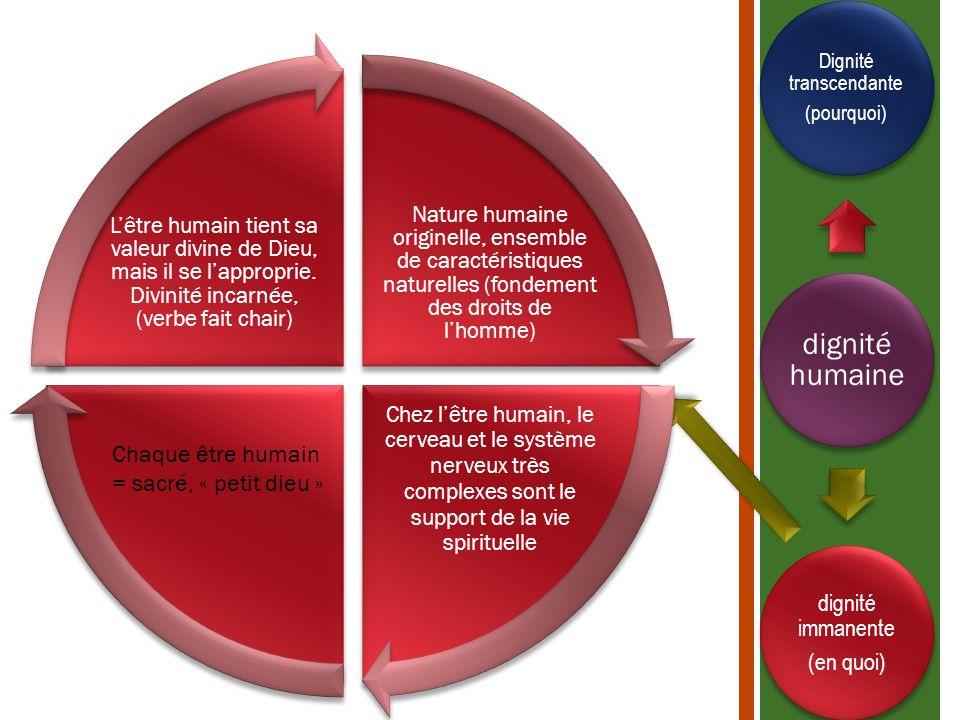 dignité humaine Dignité transcendante (pourquoi) dignité immanente (en quoi) Nature humaine originelle, ensemble de caractéristiques naturelles (fonde