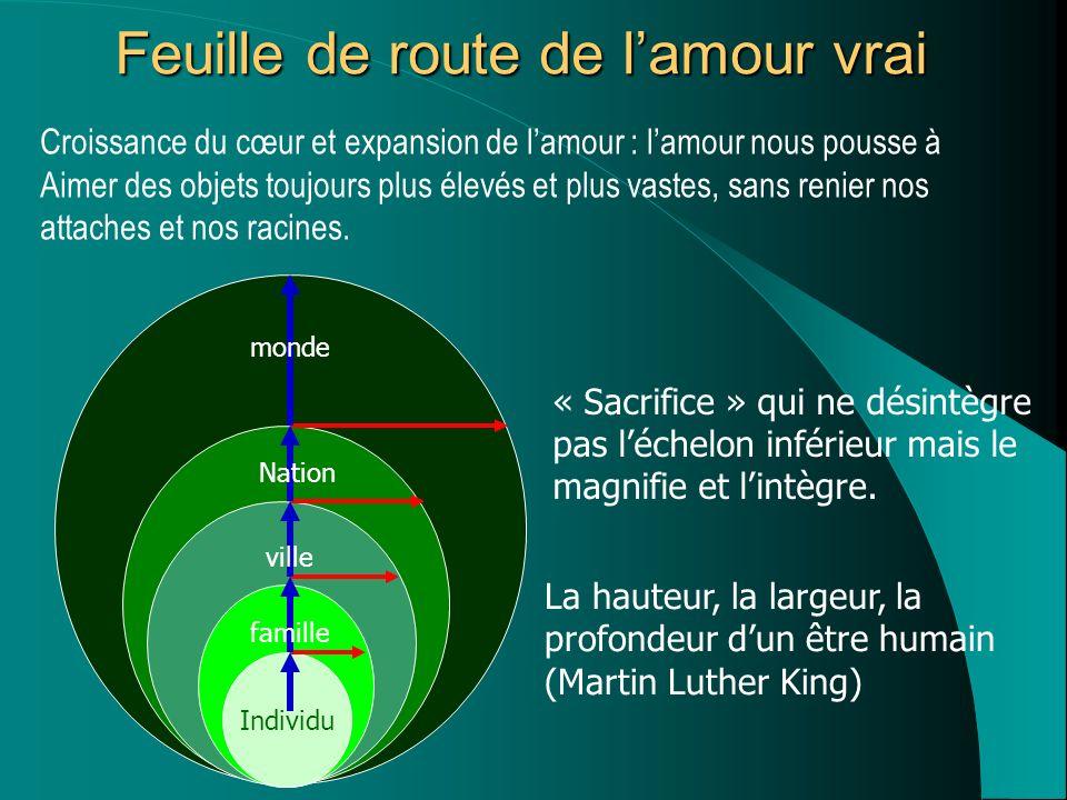 Arbre à maturité Graine Manifeste le schéma Contient le schéma de la plante Nature développement « automatique »