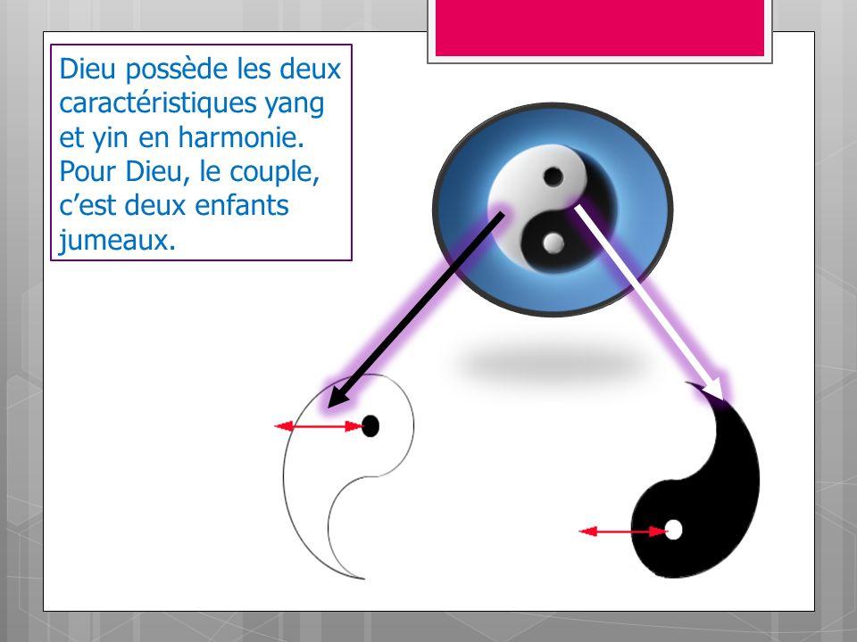Dieu possède les deux caractéristiques yang et yin en harmonie.