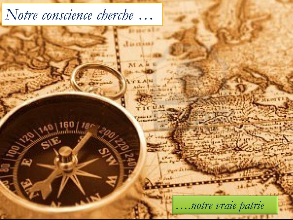 Notre conscience cherche …
