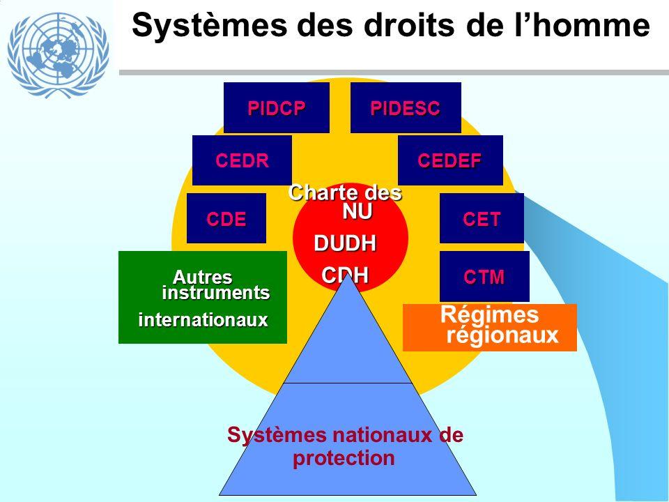 Systèmes des droits de lhomme Charte des NU DUDHCDH PIDCPPIDESC CEDRCEDEF CETCDE CTM Autres instruments internationaux Régimes régionaux