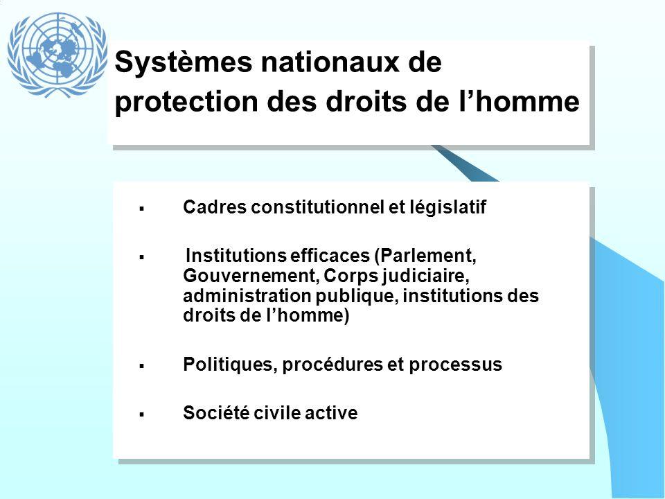 Systèmes nationaux de protection des droits de lhomme Cadres constitutionnel et législatif Institutions efficaces (Parlement, Gouvernement, Corps judi