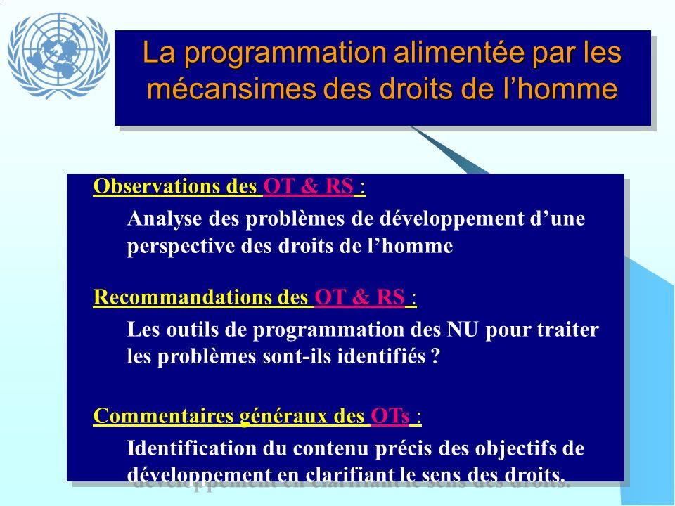 La programmation alimentée par les mécansimes des droits de lhomme Observations des OT & RS : Analyse des problèmes de développement dune perspective