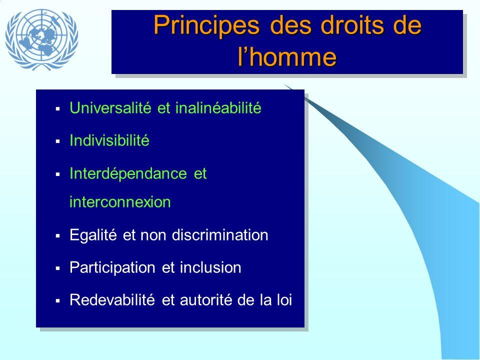 Principes des droits de lhomme Universalité et inalinéabilité Indivisibilité Interdépendance et interconnexion Egalité et non discrimination Participa