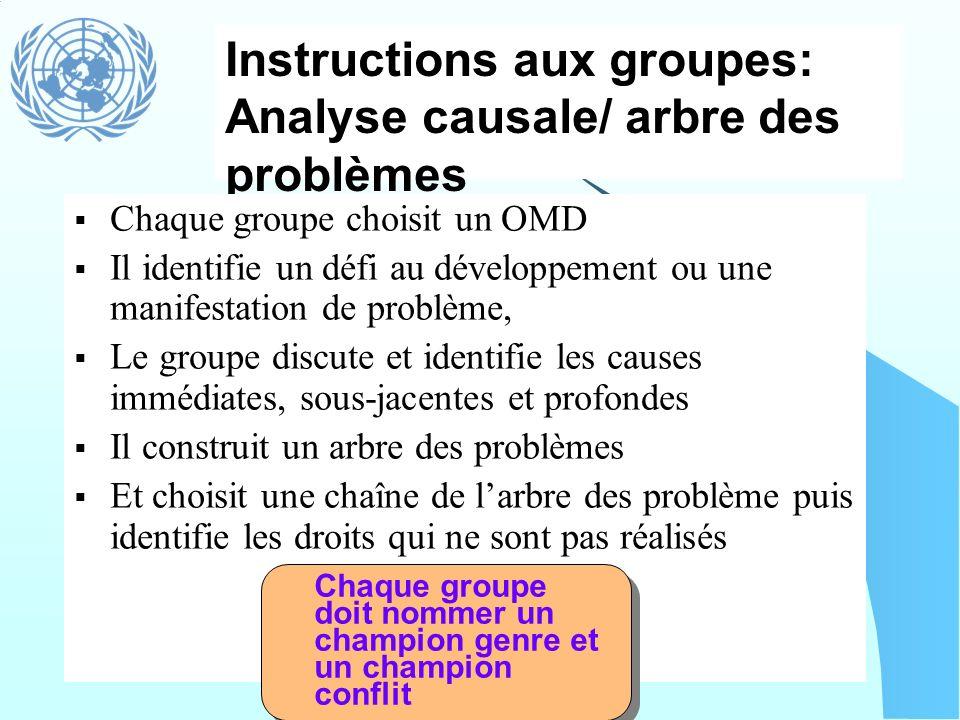 Instructions aux groupes: Analyse causale/ arbre des problèmes Chaque groupe choisit un OMD Il identifie un défi au développement ou une manifestation