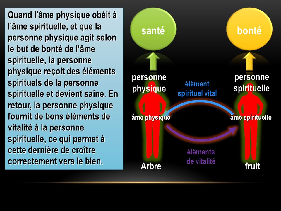 fruitArbre éléments de vitalité élément spirituel vital personne physique personnespirituelle Quand lâme physique obéit à lâme spirituelle, et que la