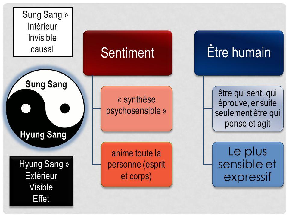 Sung Sang Hyung Sang « Sung Sang » Intérieur Invisible causal « Hyung Sang » Extérieur Visible Effet « Hyung Sang » Extérieur Visible Effet Sentiment