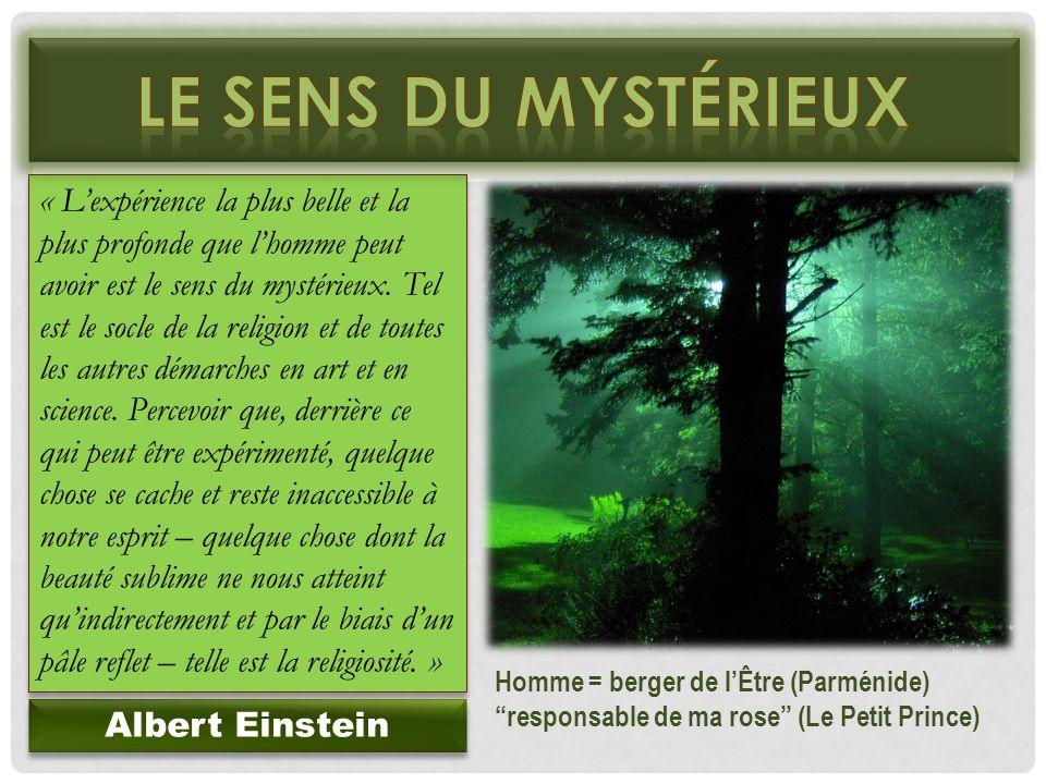 « Lexpérience la plus belle et la plus profonde que lhomme peut avoir est le sens du mystérieux. Tel est le socle de la religion et de toutes les autr