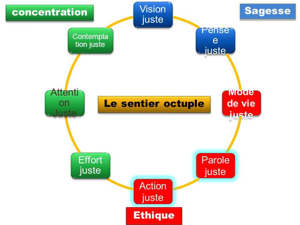 Vision juste Pensé e juste Mode de vie juste Parole juste Action juste Effort juste Contempla tion juste Sagesse Ethique Le sentier octuple concentrat