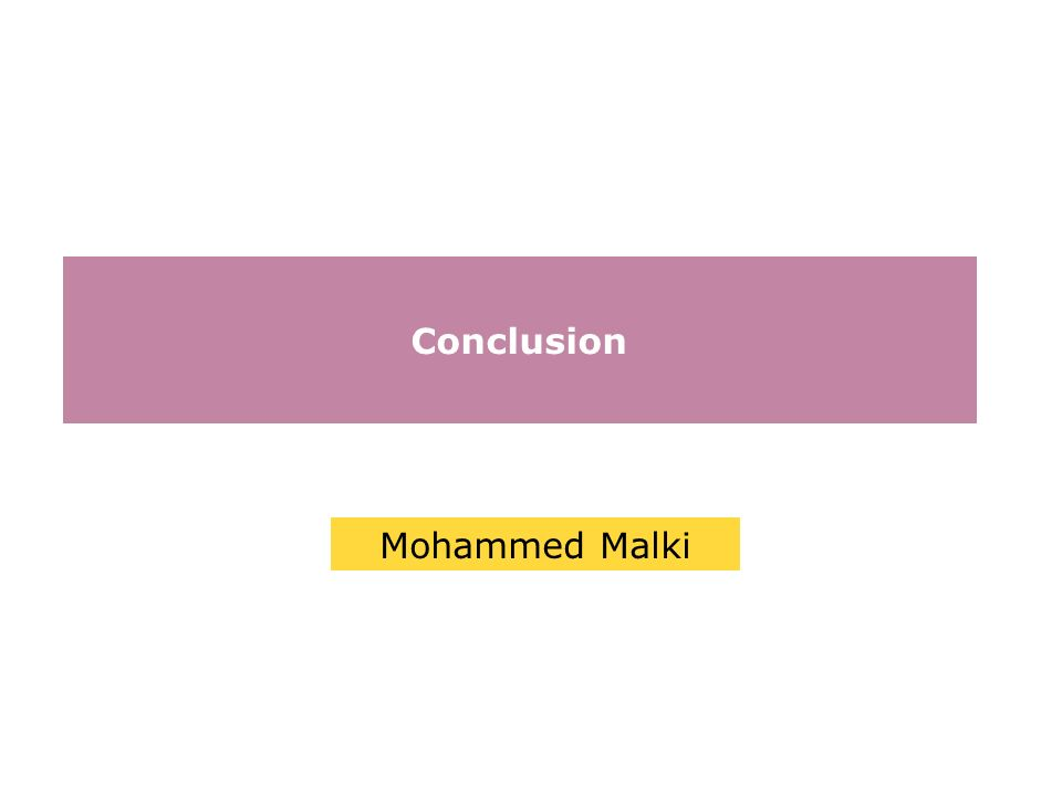 Conclusion Mohammed Malki