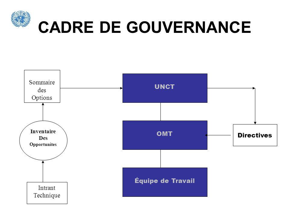 CADRE DE GOUVERNANCE UNCT Équipe de Travail OMT Sommaire des Options Inventaire Des Opportunites Intrant Technique Directives