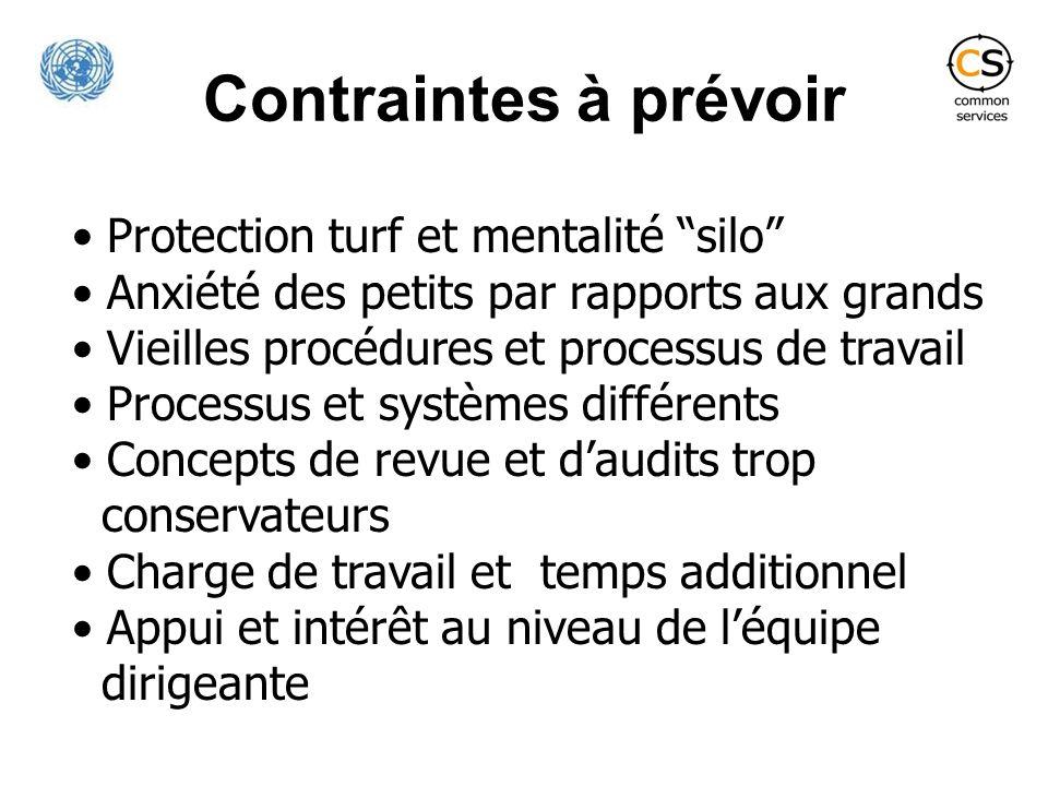 Contraintes à prévoir Protection turf et mentalité silo Anxiété des petits par rapports aux grands Vieilles procédures et processus de travail Process