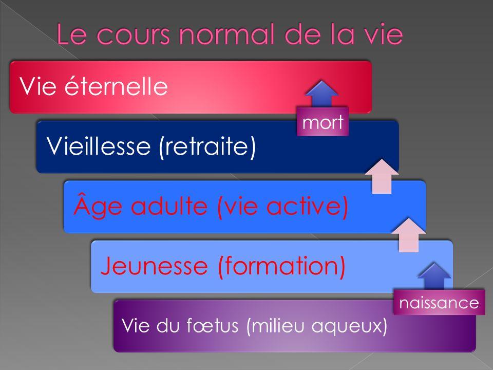 Vie éternelleVieillesse (retraite)Âge adulte (vie active)Jeunesse (formation) Vie du fœtus (milieu aqueux) naissance mort