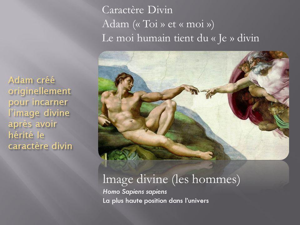 Adam créé originellement pour incarner limage divine après avoir hérité le caractère divin lmage divine (les hommes) Homo Sapiens sapiens La plus haut