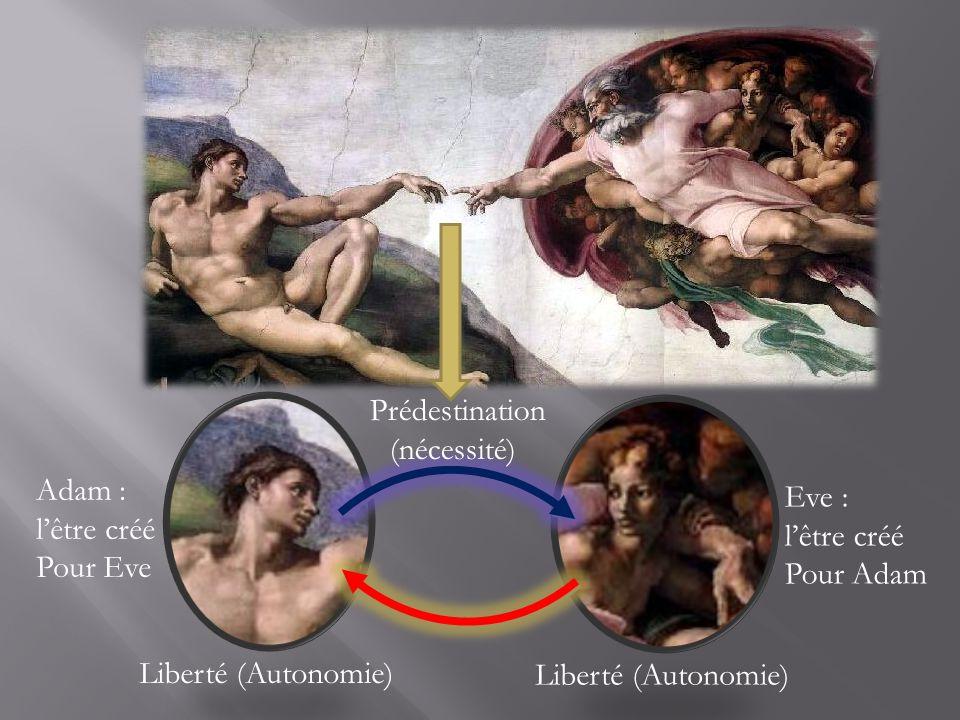 Adam : lêtre créé Pour Eve Eve : lêtre créé Pour Adam Liberté (Autonomie) Prédestination (nécessité)