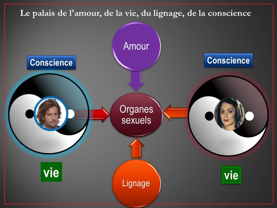 Organes sexuels Amour Lignage Conscience vie Le palais de l'amour, de la vie, du lignage, de la conscience