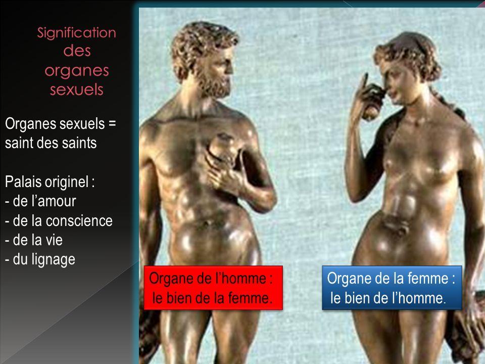 Organes sexuels = saint des saints Palais originel : - de lamour - de la conscience - de la vie - du lignage Organe de lhomme : le bien de la femme. O