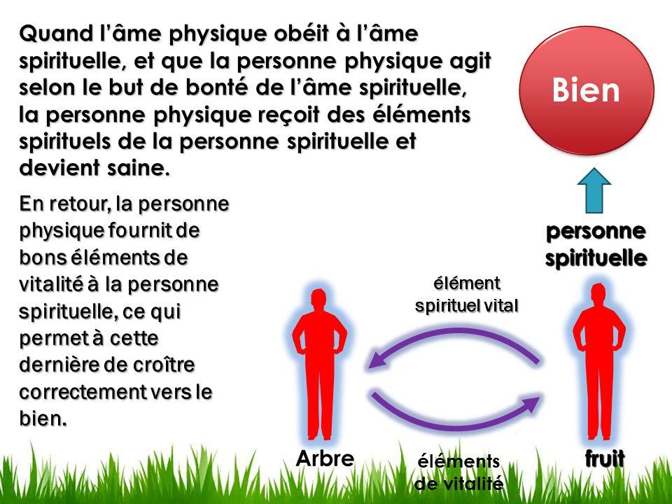 Bien fruitArbre éléments de vitalité élément spirituel vital En retour, la personne physique fournit de bons éléments de vitalité à la personne spirit
