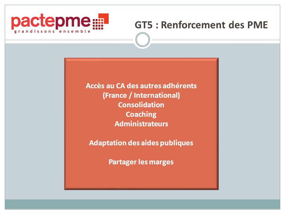 GT5 : Renforcement des PME Accès au CA des autres adhérents (France / International) Consolidation Coaching Administrateurs Adaptation des aides publiques Partager les marges