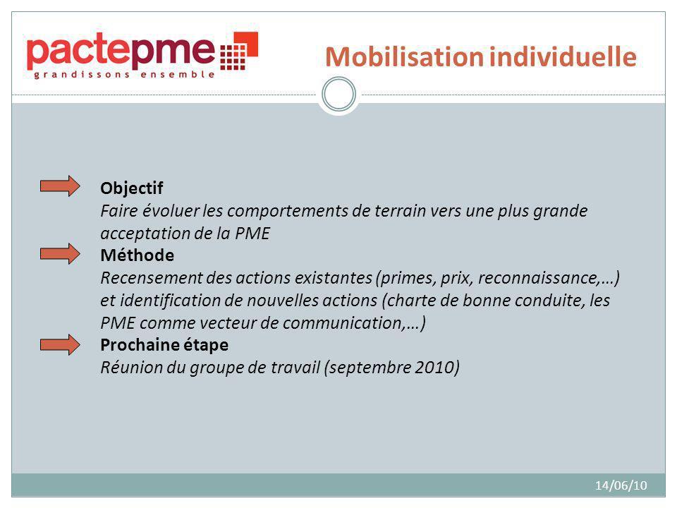 Mobilisation individuelle 14/06/10 Objectif Faire évoluer les comportements de terrain vers une plus grande acceptation de la PME Méthode Recensement