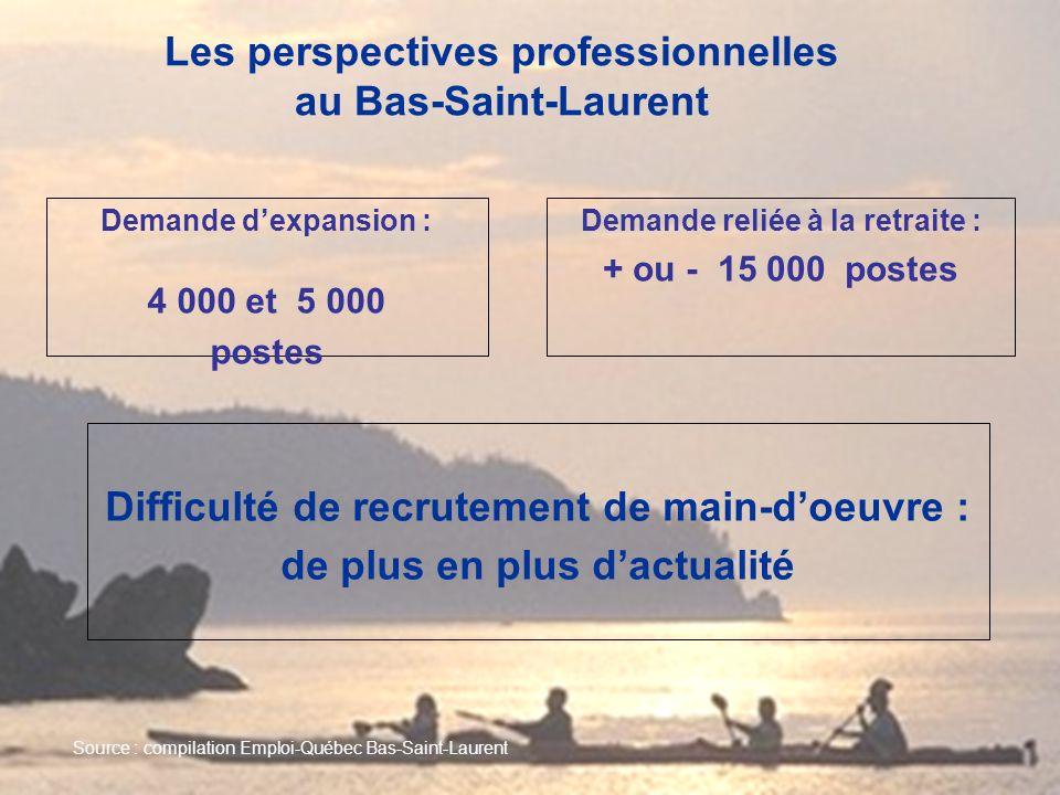 Les perspectives professionnelles au Bas-Saint-Laurent Demande dexpansion : 4 000 et 5 000 postes Demande reliée à la retraite : + ou - 15 000 postes