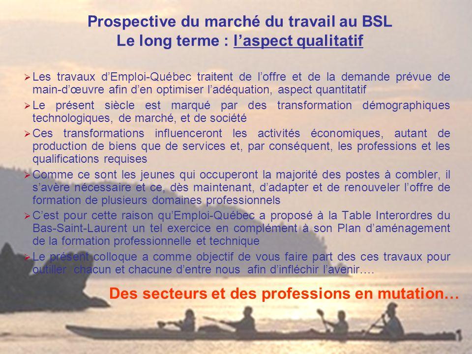 Prospective du marché du travail au BSL Le long terme : laspect qualitatif Les travaux dEmploi-Québec traitent de loffre et de la demande prévue de ma