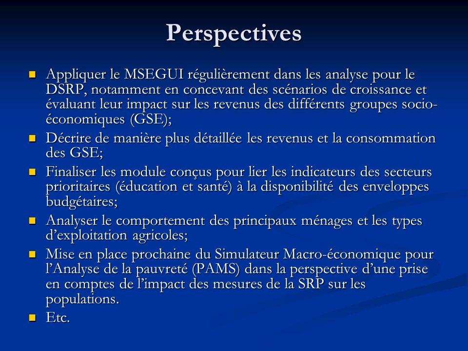 Perspectives Appliquer le MSEGUI régulièrement dans les analyse pour le DSRP, notamment en concevant des scénarios de croissance et évaluant leur impa