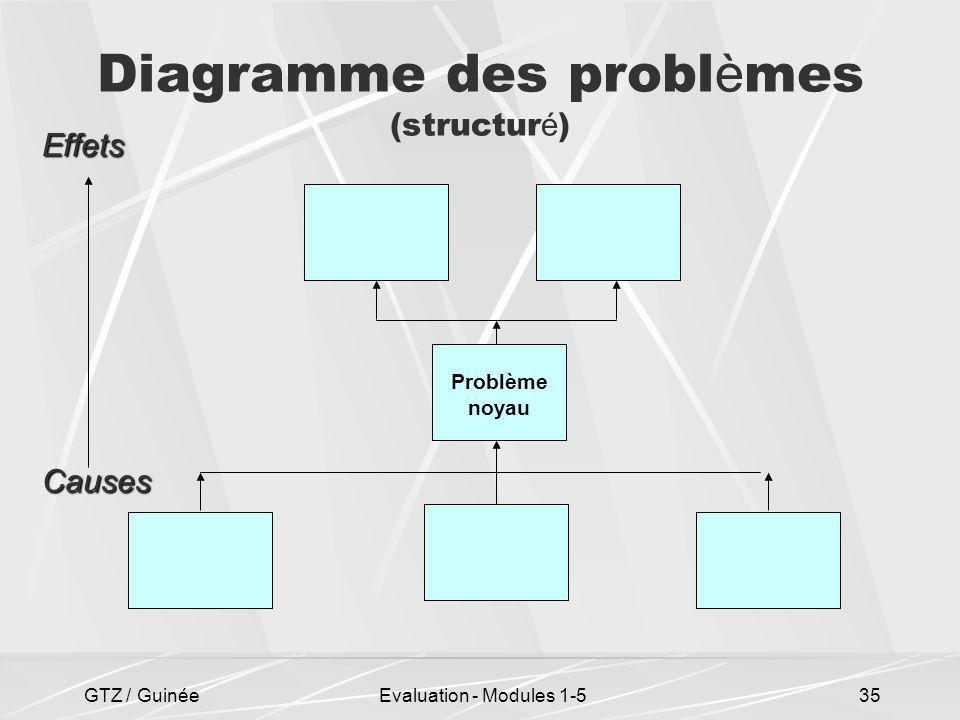 GTZ / GuinéeEvaluation - Modules 1-535 Diagramme des probl è mes (structur é ) Problème noyau Effets Causes